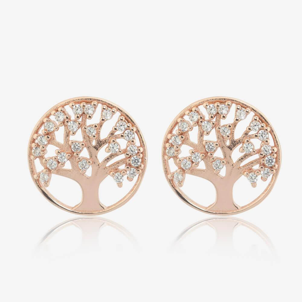 Stud Earrings Warren James Jewllers